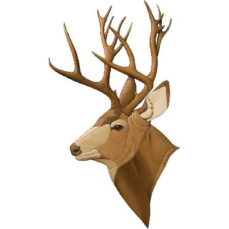 Deer head png. Transparent pictures free icons