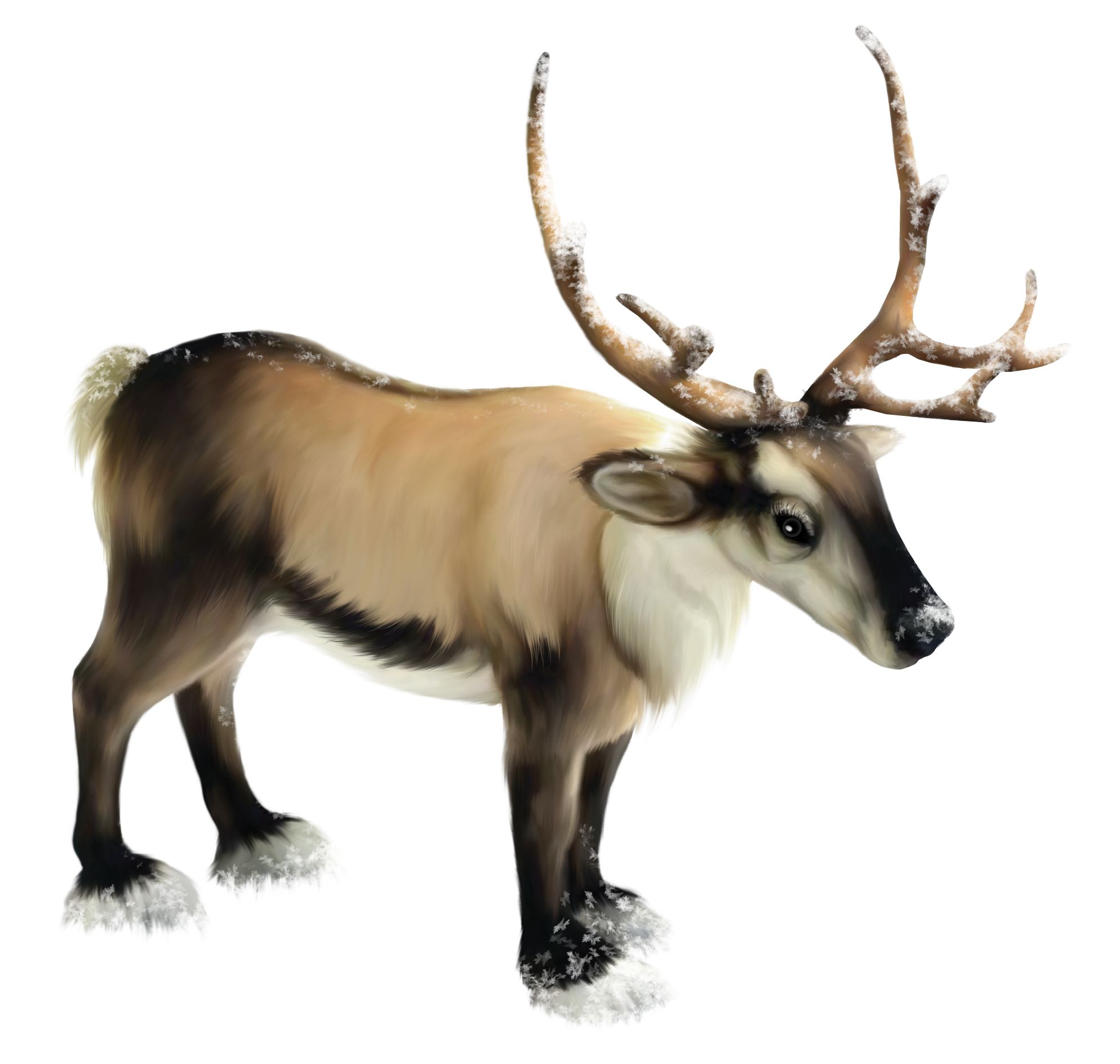 Reindeer clipart png. Gallery yopriceville high quality