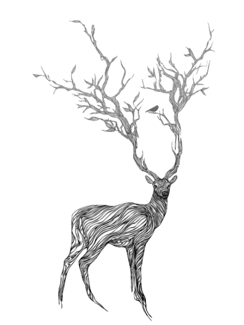 Reindeer black antlers png picture. Image deer transparent animal