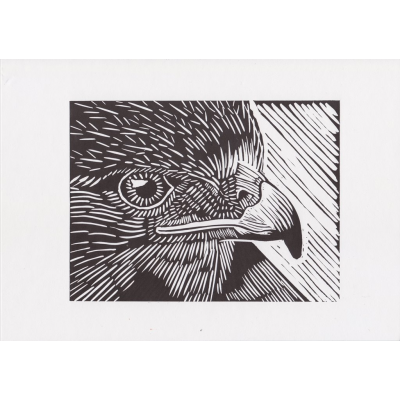 Relief drawing printmaking. Buzzard lino print by
