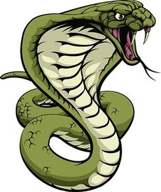 Reptile cool snake