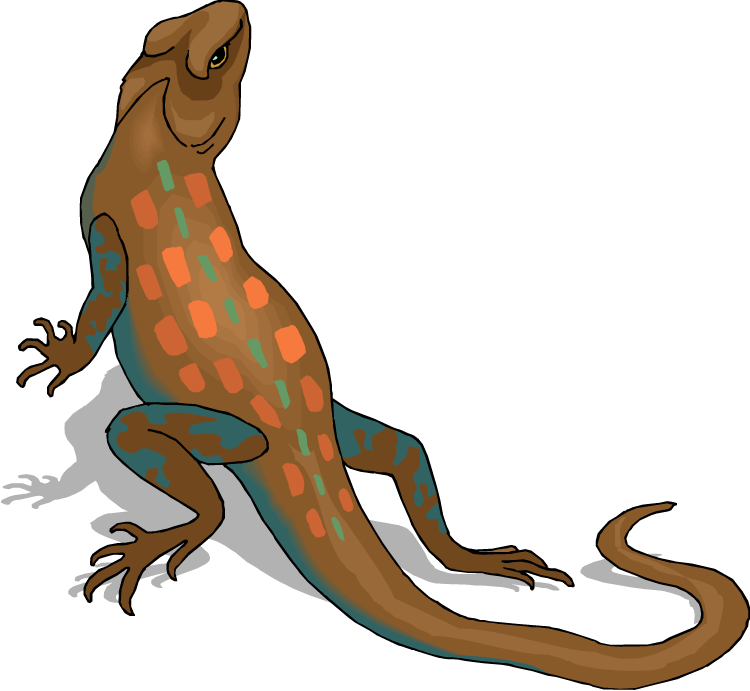 Lizard clipart green lizard. Free