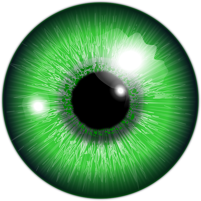 Reptile eye png. Free image on pixabay