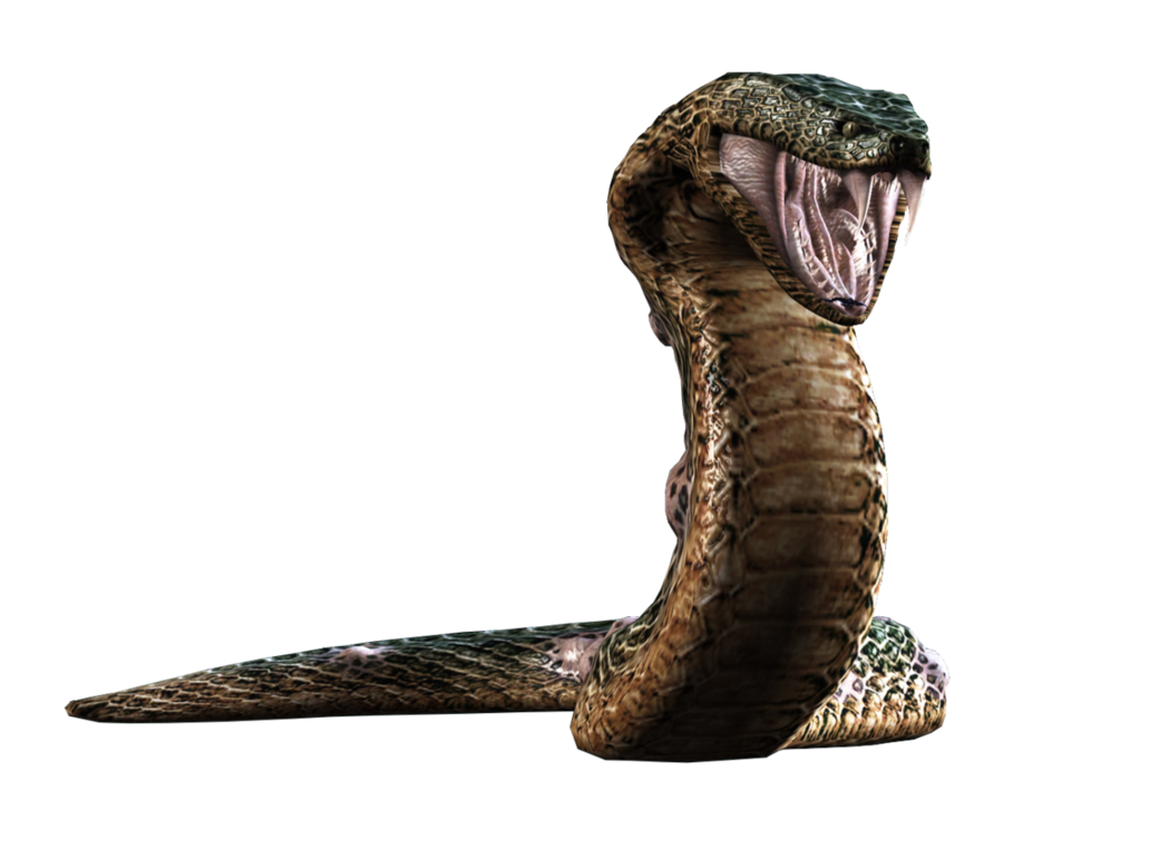 Resident evil snake png. Hd yawn render by