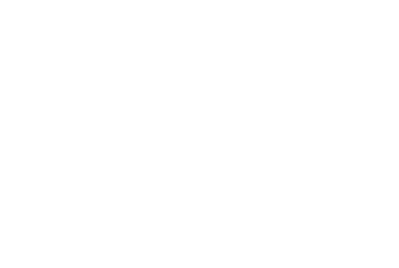 Revolution drawing poetic. Voices contemporary calligraphy by