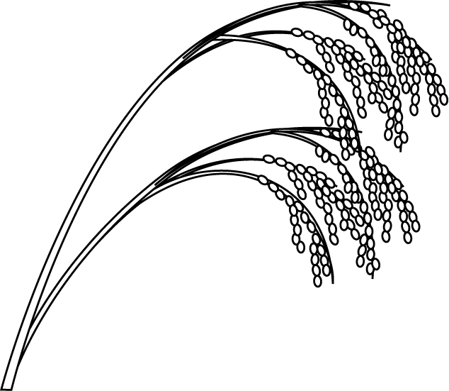 rice clipart rice crop