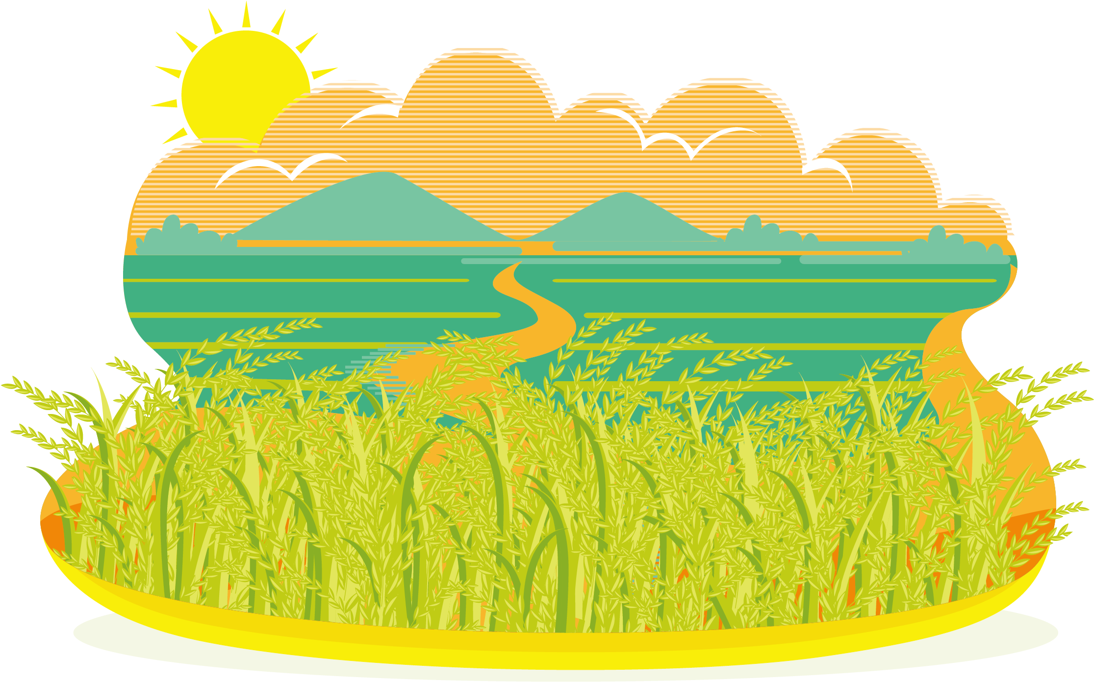 Rice clipart rice paddy. Download field png image