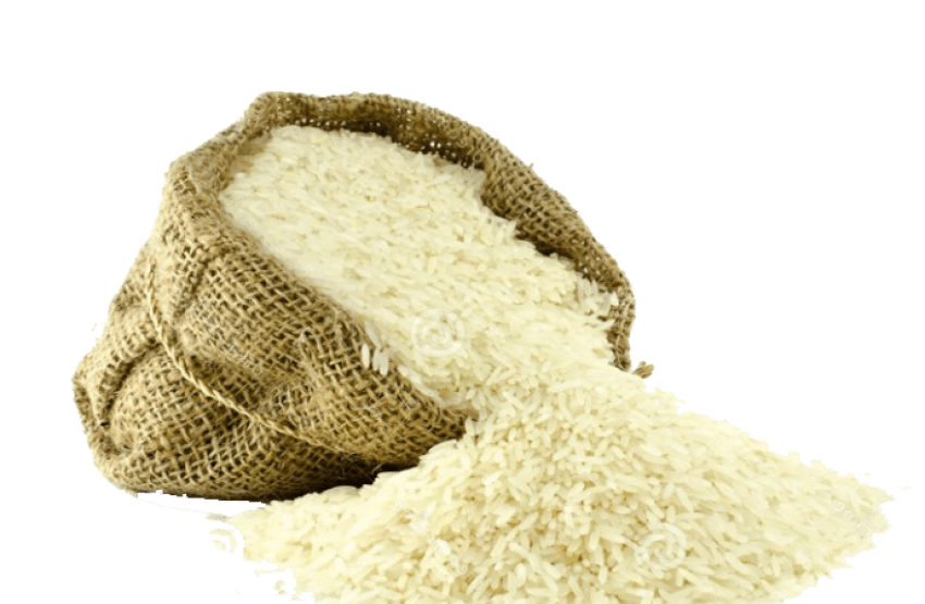 Rice png. Free download images toppng