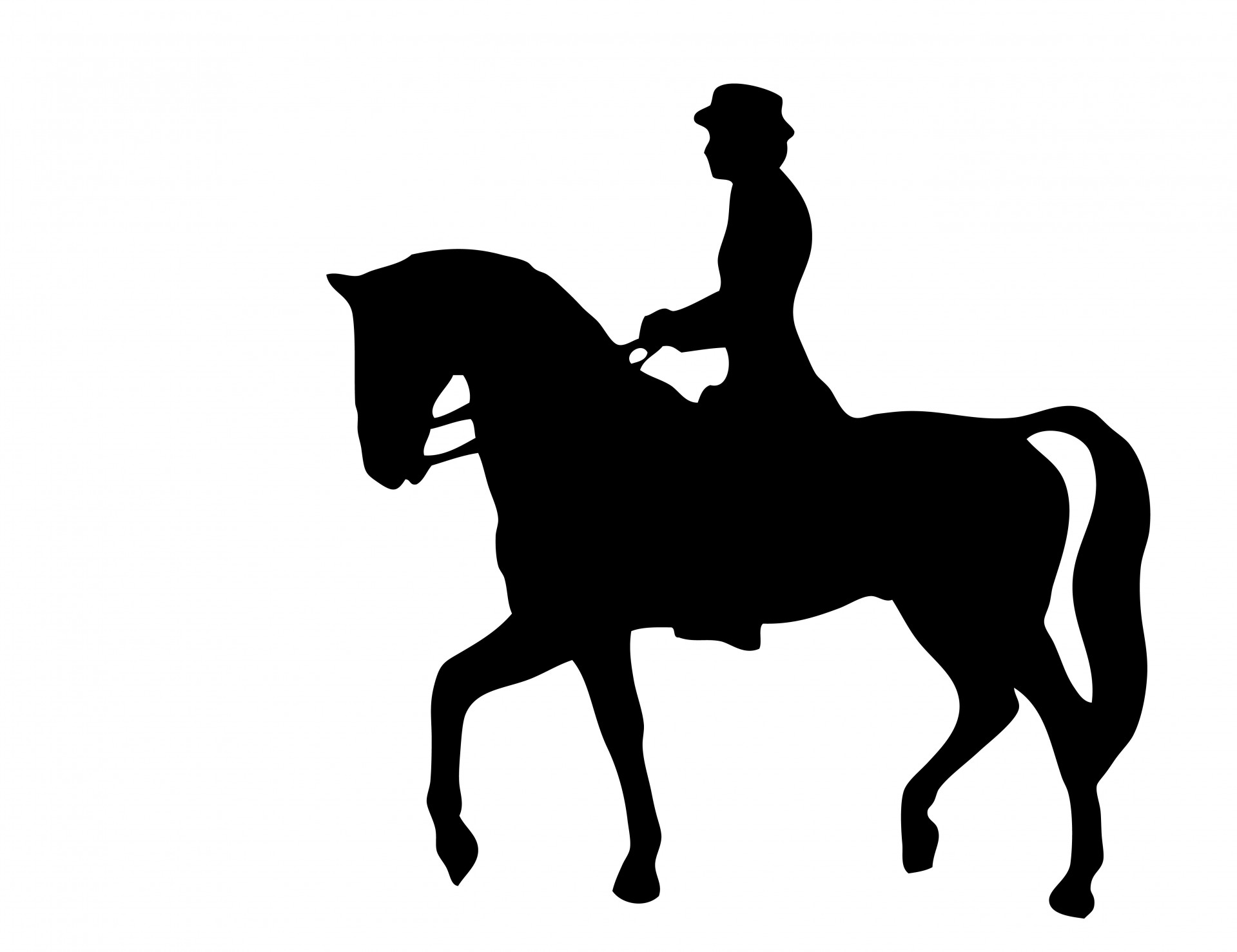 Riding clipart horse rider. Silhouette free stock photo image library download
