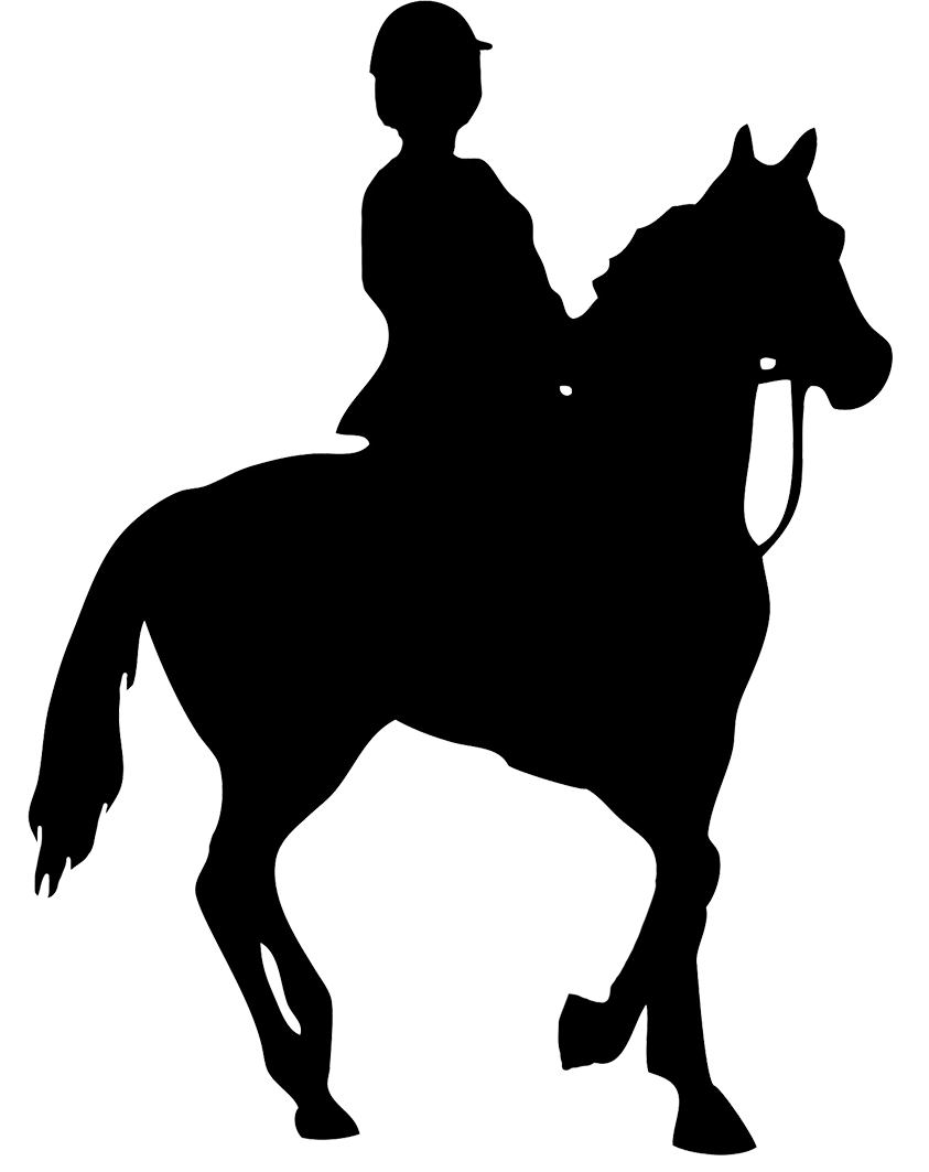 Horse silhouette png. Of foal black rider
