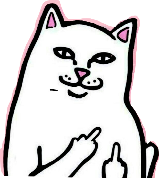 Rip n dip cat png. Being sassy cats pinterest