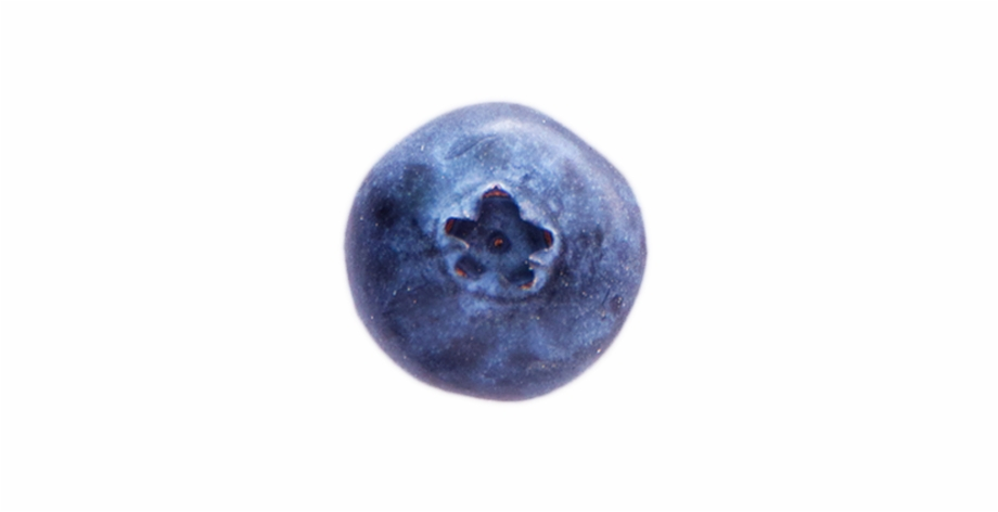 Ripe blueberry