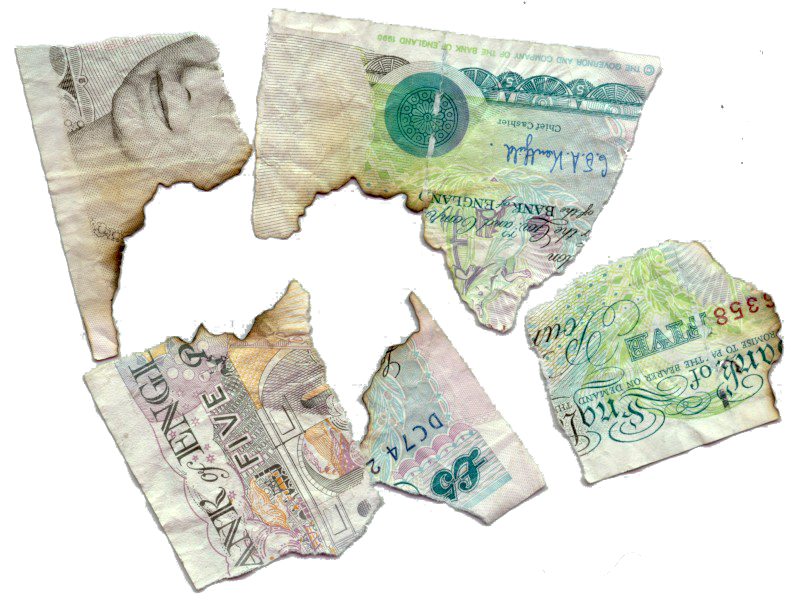 Dollar transparent crumpled. Burnt and fragments of