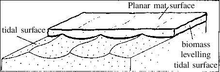 Ripples drawing rippled. Diagrammatic sketch showing leveling