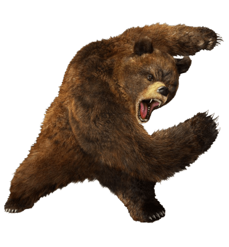 Roaring bear png. Angry fighting photos