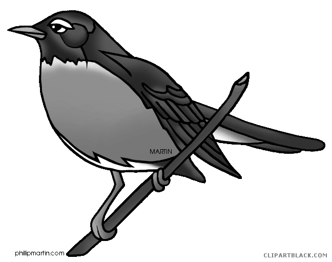 Robin clipart black and white. Page of clipartblack com