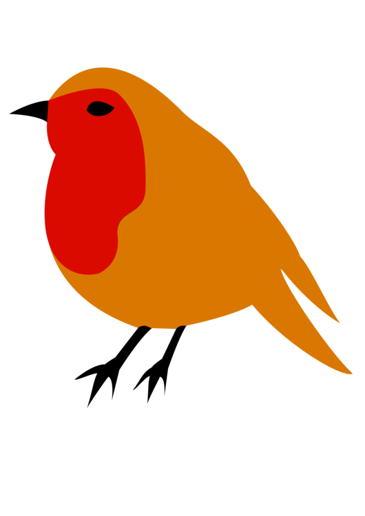 Robin clipart real bird. European american drawing clip