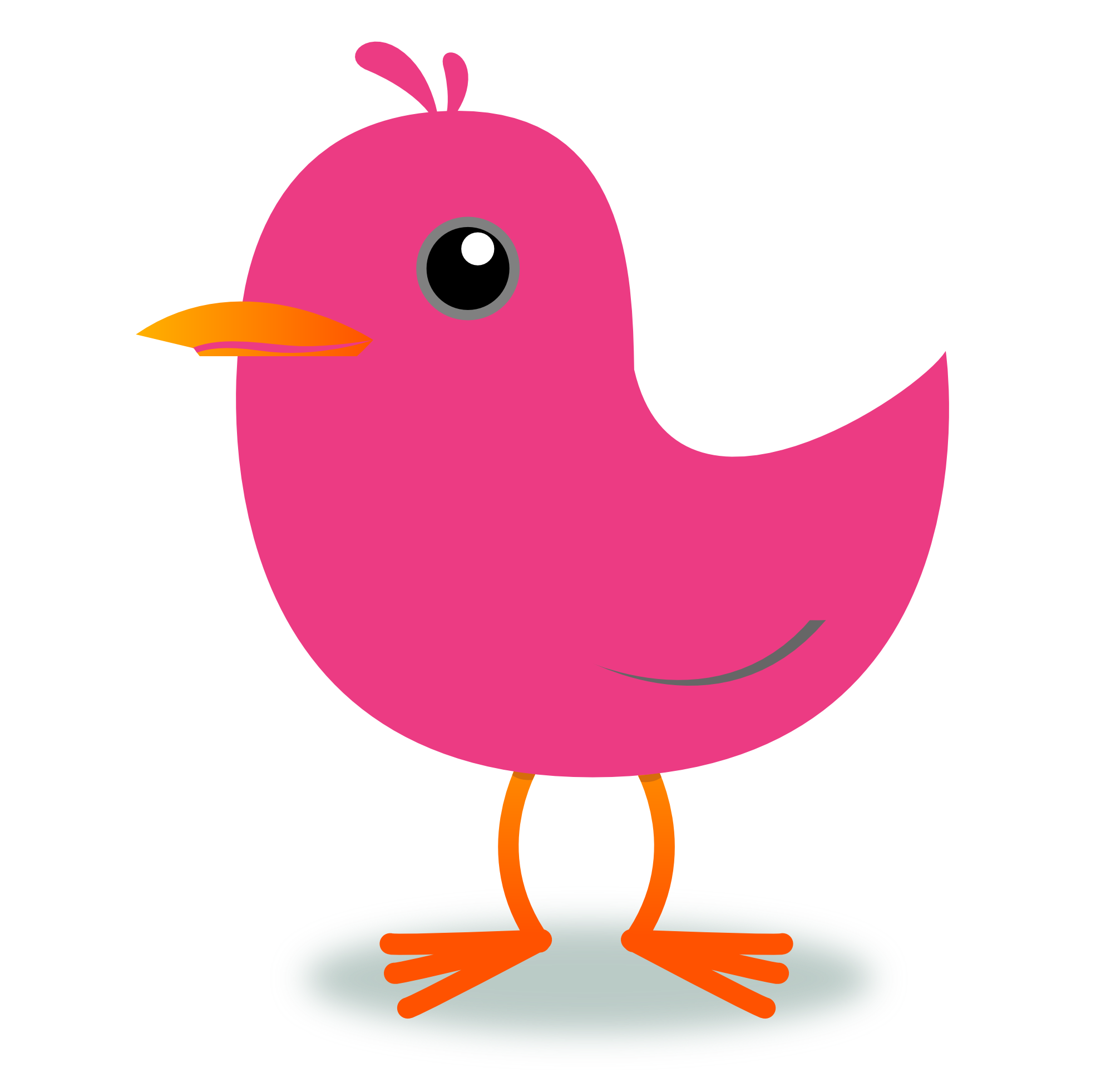 Robin clipart real bird. Red at getdrawings com