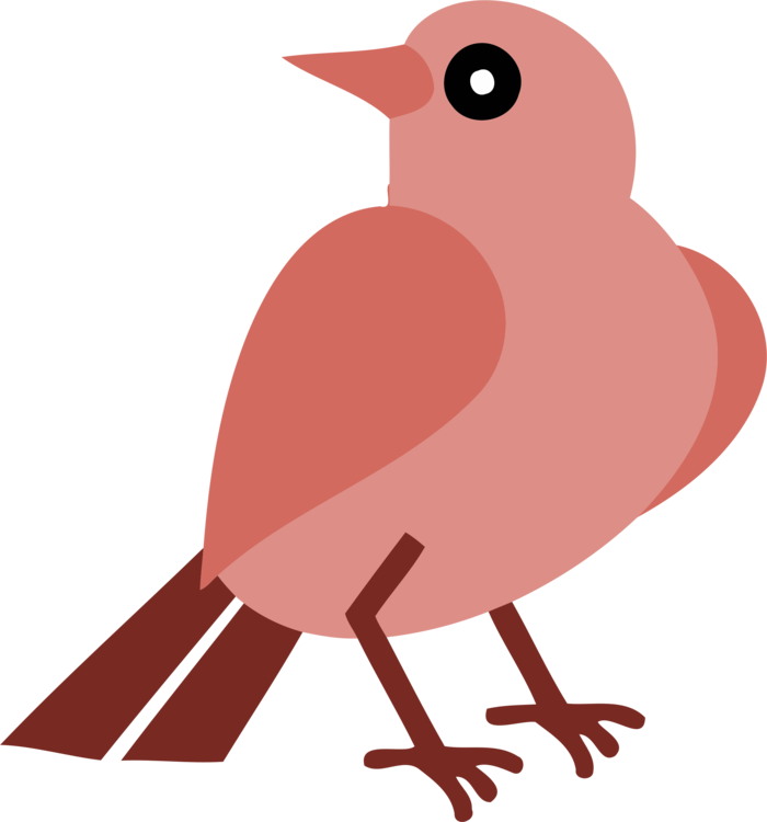 Robin clipart real bird. European silhouette beak free