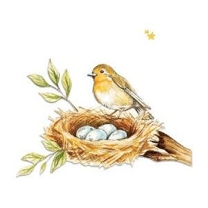 Pin by on pinterest. Robin clipart spring robin picture black and white