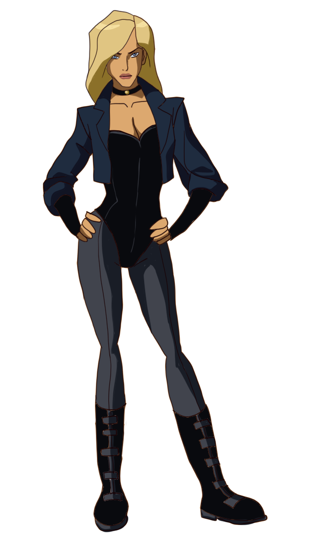 Robin png young justice. Emilya i m quitting