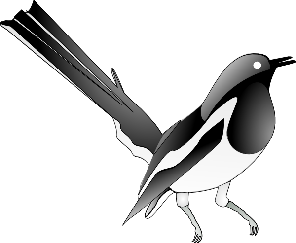 Oriental magpie clip art. Robin vector animated clip stock