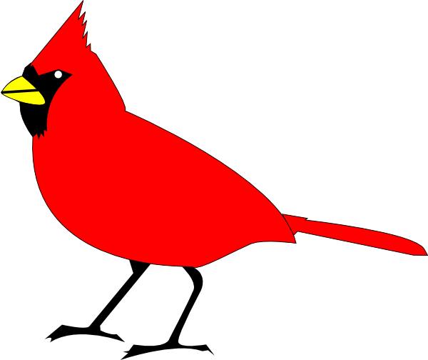 Robin vector outline. Red image library