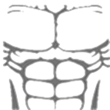 Roblox muscle t shirt png.