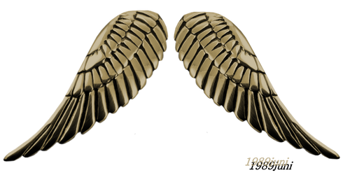 Robot wings png. Favourites by nikulina helena