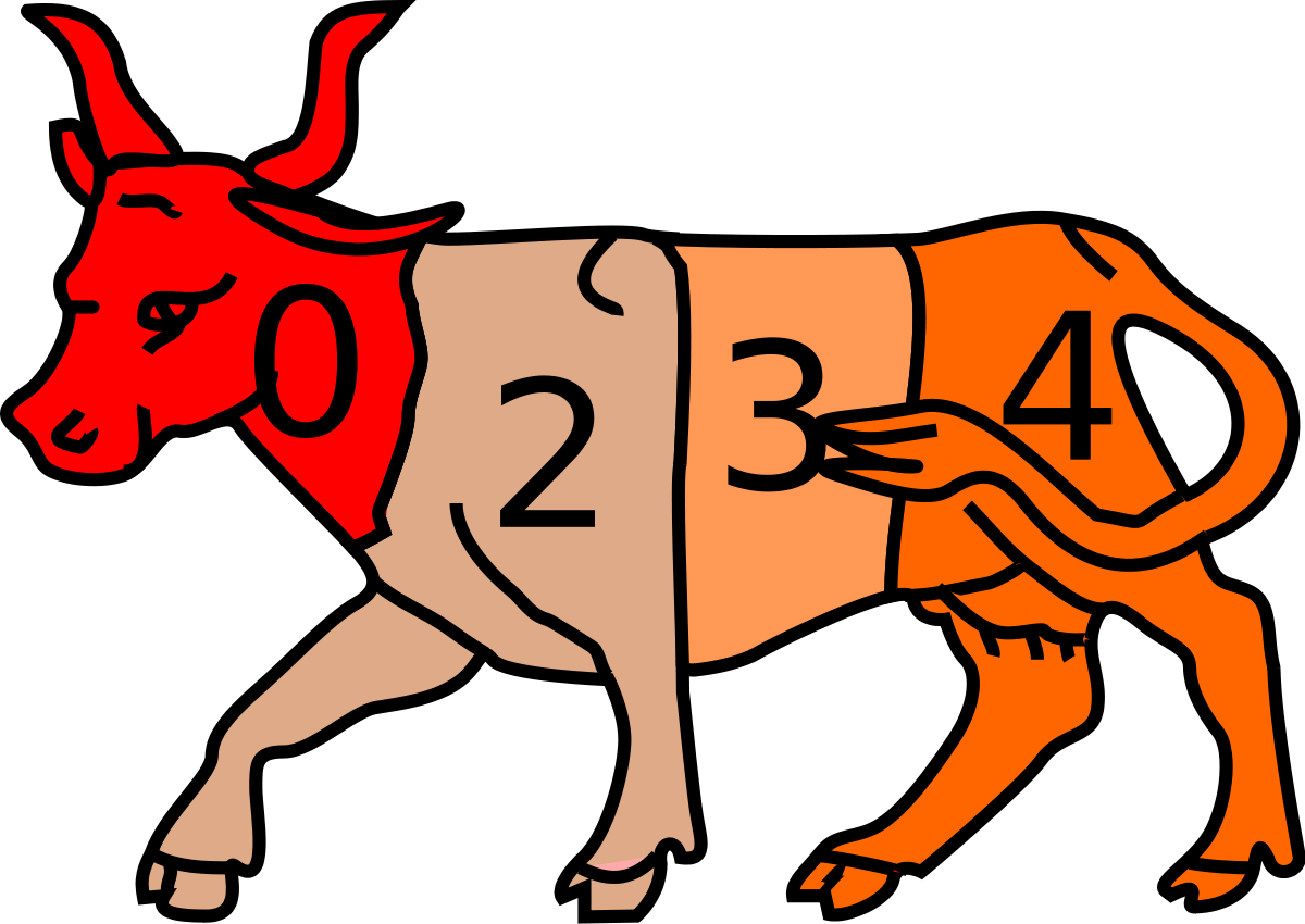 Rodeo svg first. Chilean wikipedia