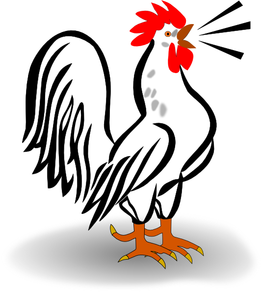 Rooster clipart. Free cliparts download clip