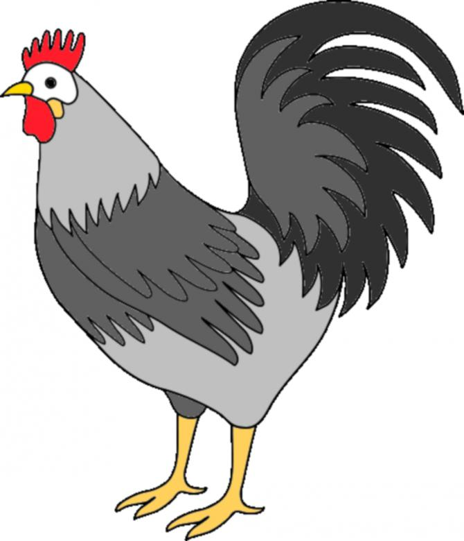 Rooster clipart. Free stock photo by