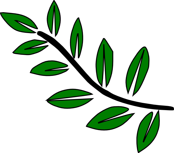 Roots clipart 10 leave. Stem structure by kelsey