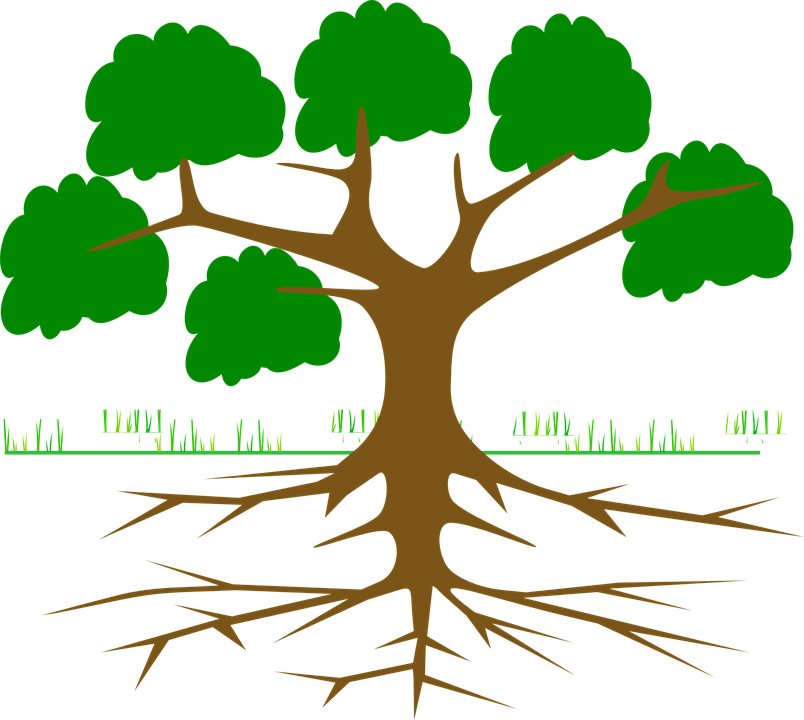 Roots clipart 10 leave. Tree silhouette at getdrawings