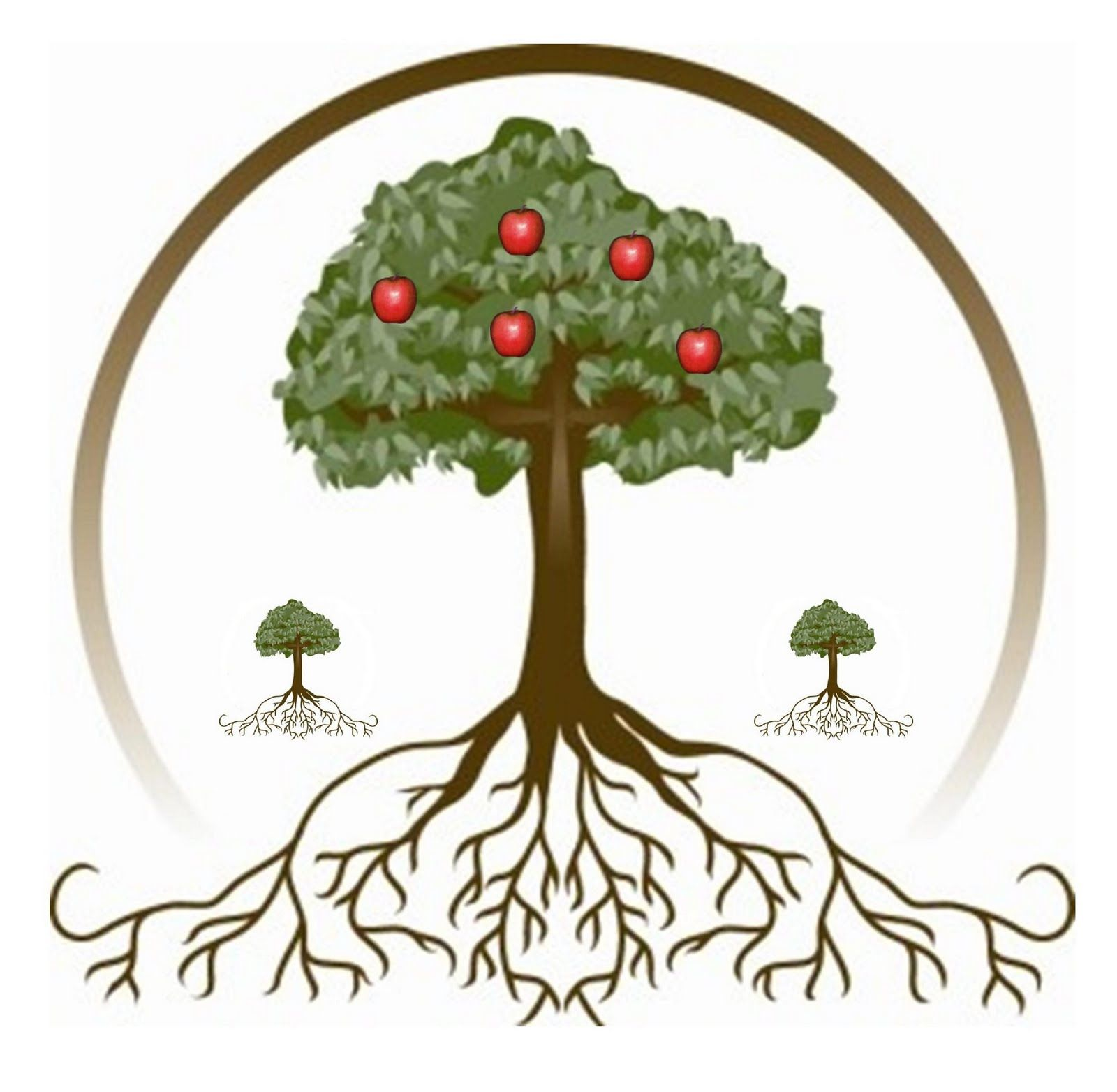 Roots clipart apple tree. With best logos pinterest
