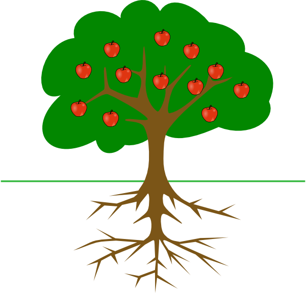sprout clipart tree sprout