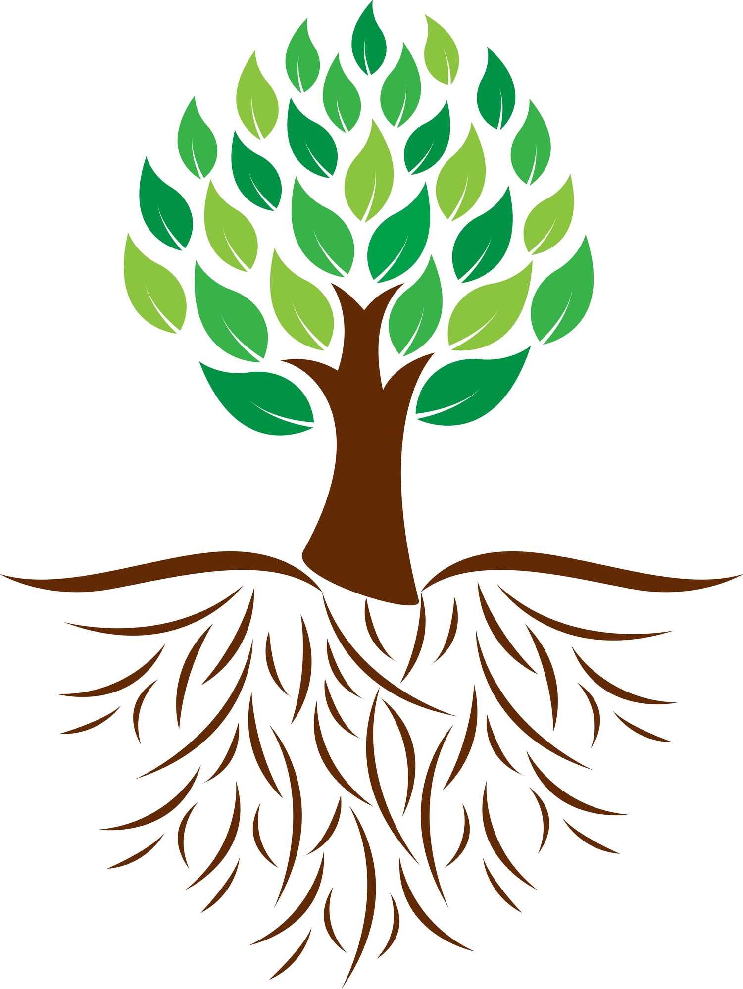 Roots clipart detailed tree. Awesome with gallery digital