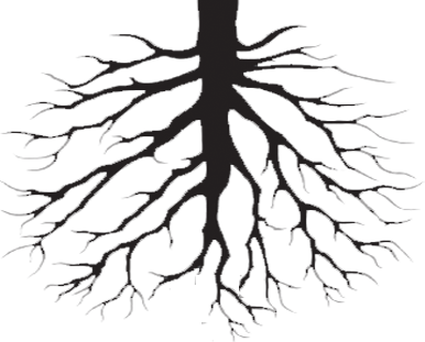 Roots clipart detailed tree. Silhouette at getdrawings com
