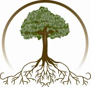 Roots clipart detailed tree. Family with
