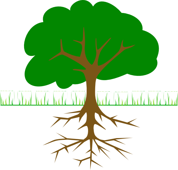 Roots clipart soil clipart. Simple tree root