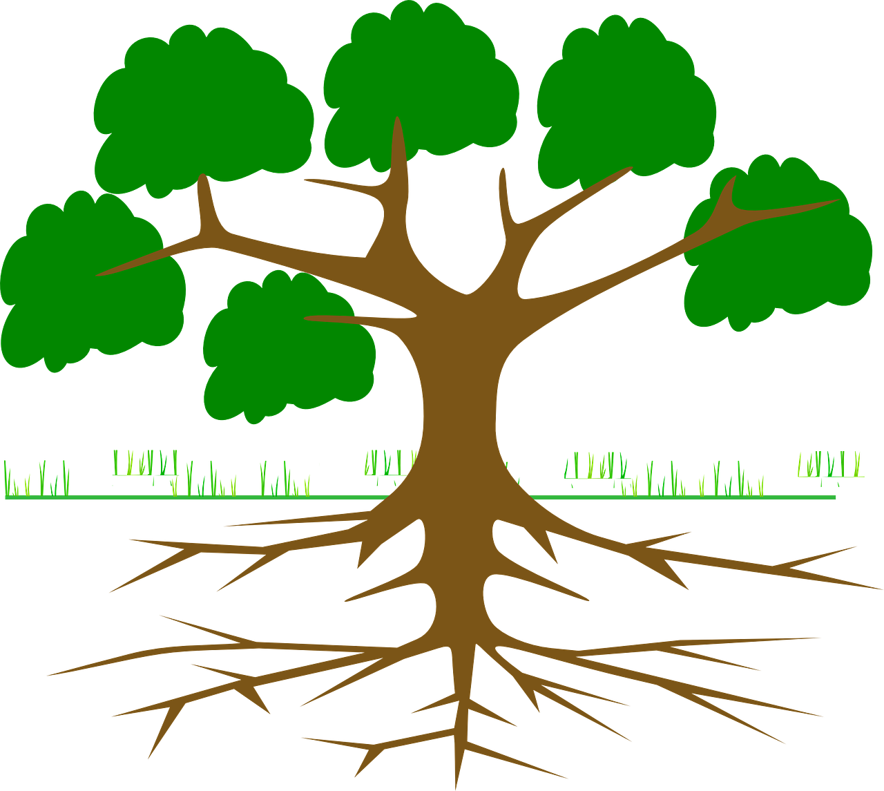 Roots clipart plant nutrient. Mycorrhizae getting to the