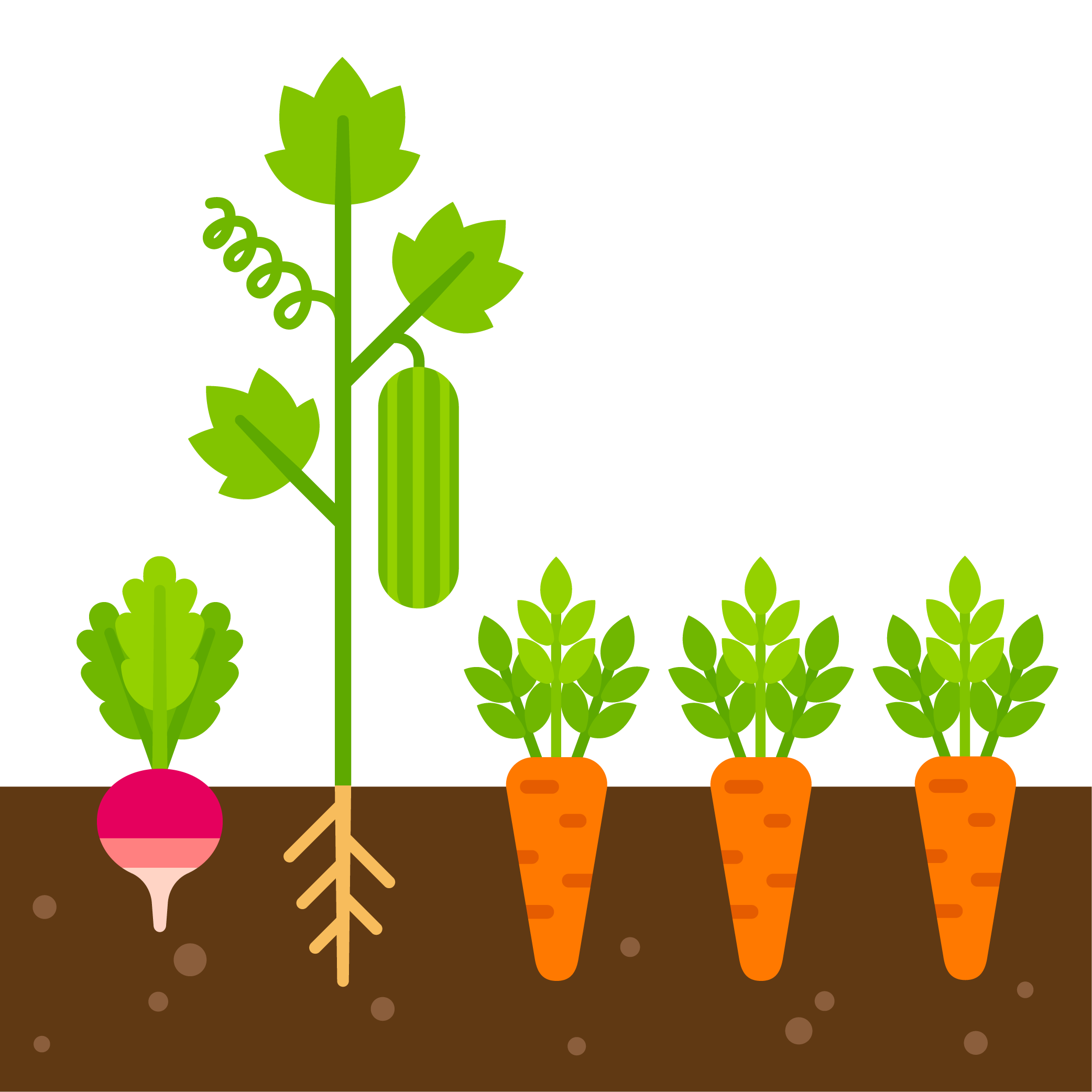 Roots clipart plant nutrient. Gardening basics healthy soil