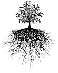 Roots clipart root texas. Yearbook on pinterest
