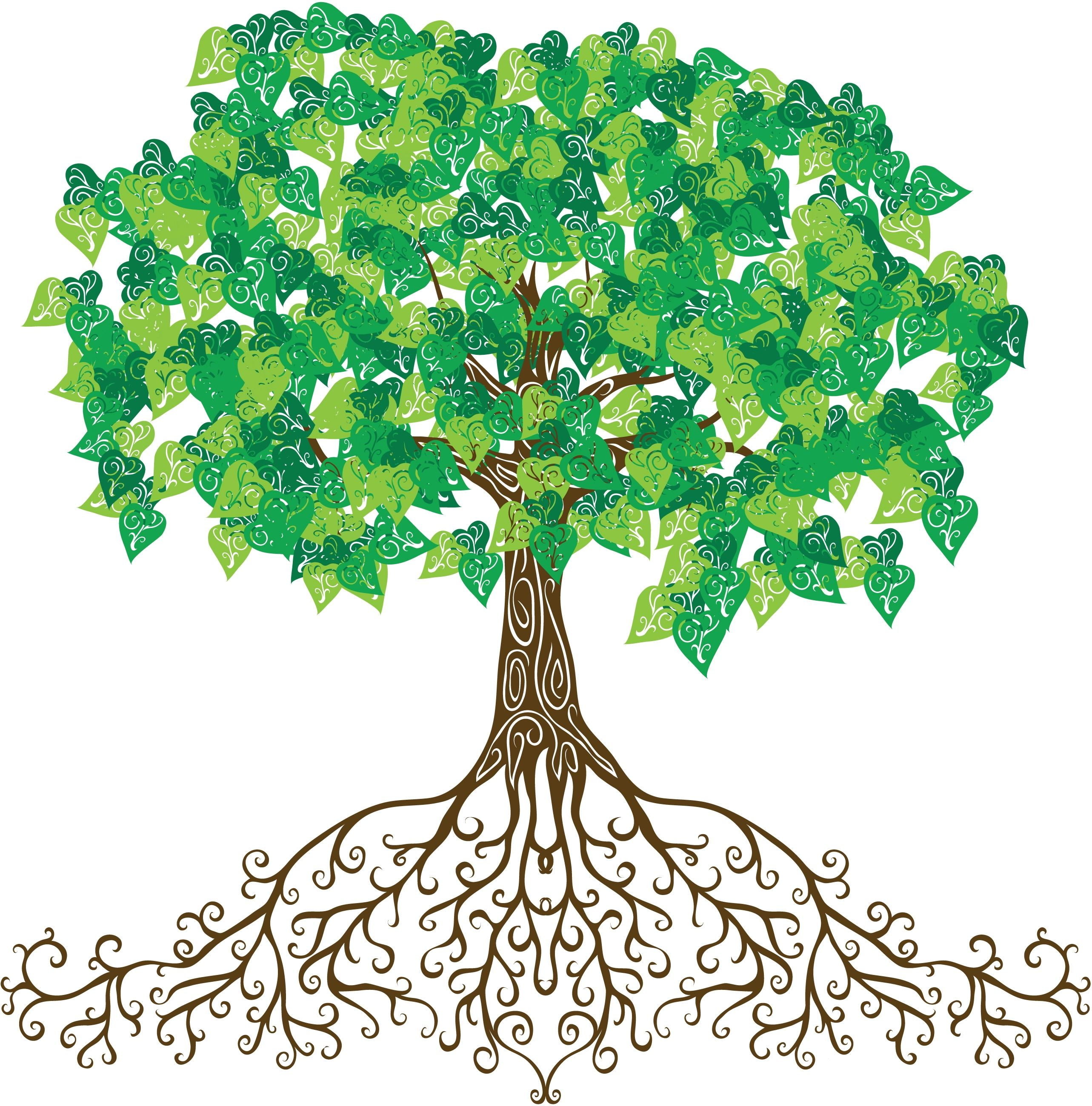 Roots clipart rooted tree. When i sing imagine