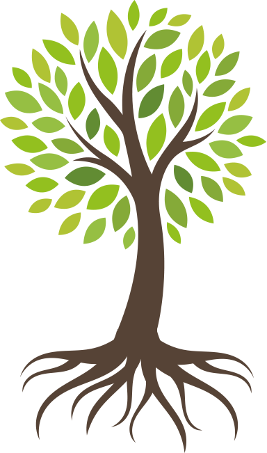 Roots clipart rooted tree. Oxyjet promax ultimate care