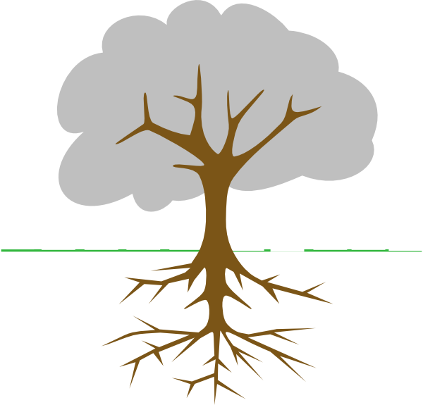 roots clipart rooted tree