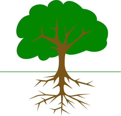 Roots clipart wit. Clip art tree trunk