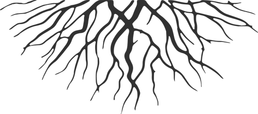 Image. Roots png clipart free stock