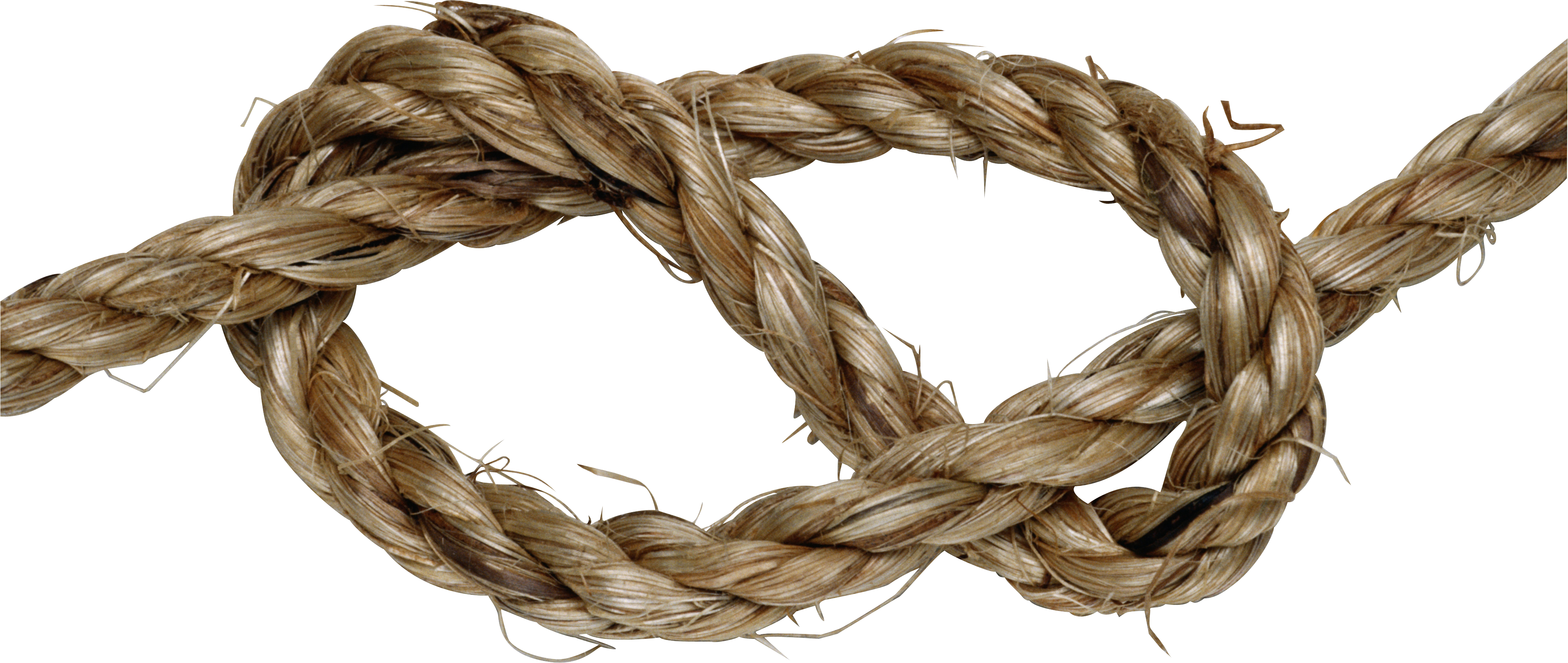 Rope knot png.