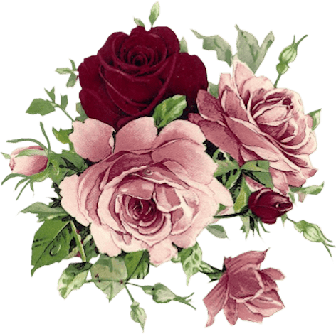 Rosas png para photoshop. Vintage scrap rose